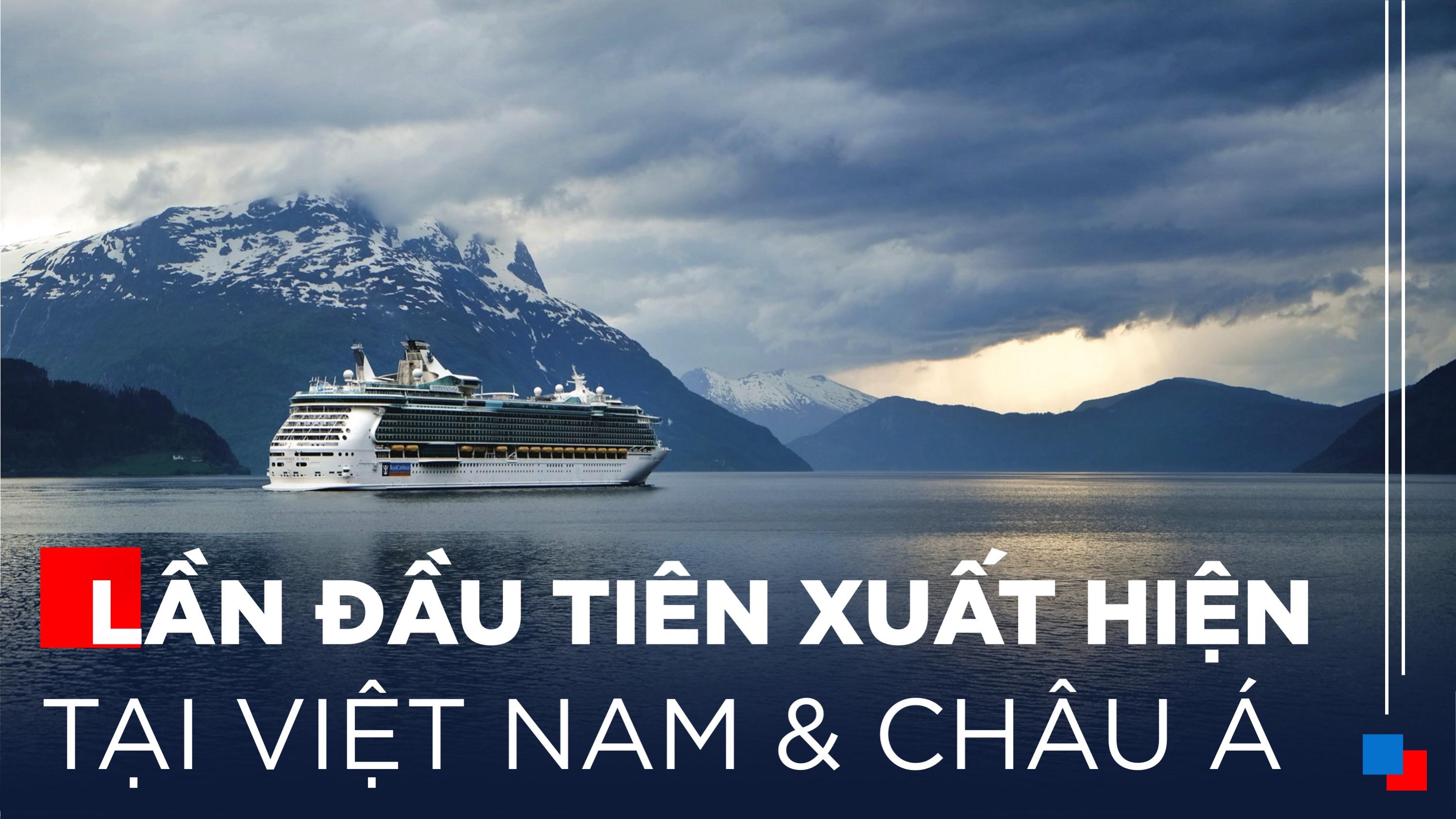Gỗ An Cường | Dòng Sản Phẩm Cho Ngành Tàu Biển Lần Đầu Tiên Xuất Hiện Tại Việt Nam Và Châu Á